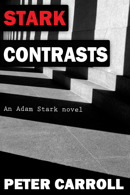 Stark Contrasts Cover